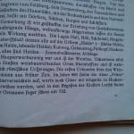 Ersterwähnung von Ockenheim in den Lorscher Regesten von 732?!